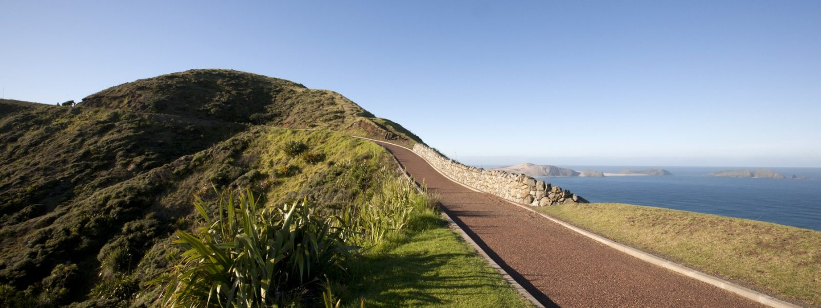 Cape Reinga Seal Extension - Header Image