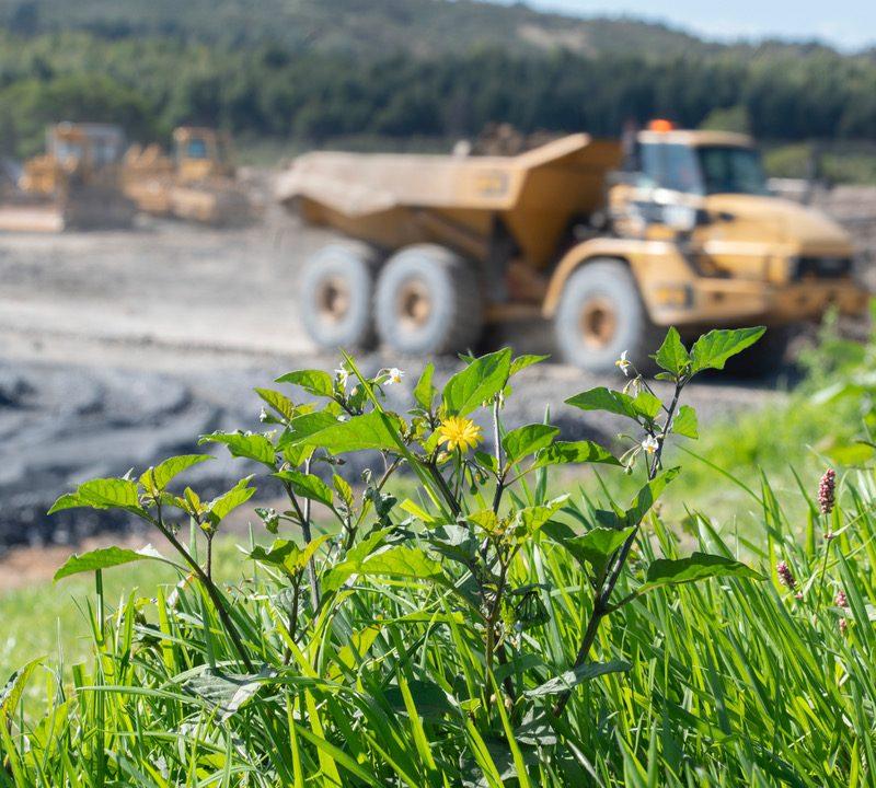 Ngāwhā Geothermal Plant Expansion - Teaser Image